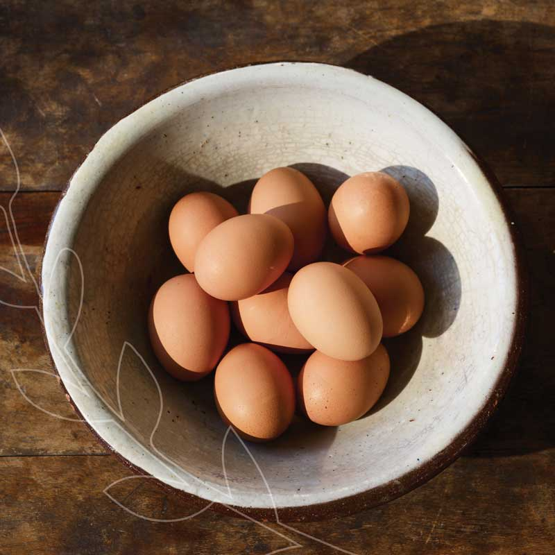 Our organic eggs are raised without antibiotics or added hormones. #BestofMet